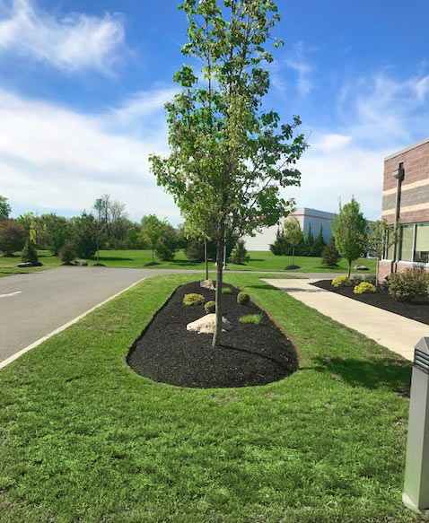Visions Greenworks - South Jersey Commercial Property Maintenance